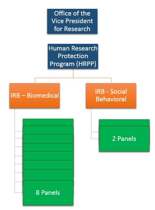 IRB Organizational Structure: OVPR on top, Human Research Protection Program underneath, under that are two boxes for IRB Biomedical and IRB Social Behavior, under Biomedical is a representation of 8 panels, under Social Behavioral are two panels