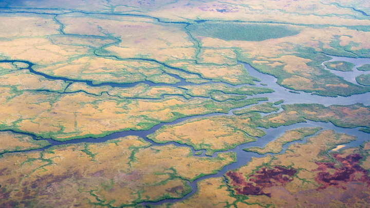 Aerial view of a branched river